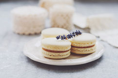 Vanilla macaroons with lavender and vintage french laces on grey Royalty Free Stock Photos