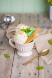 Vanilla and mint ice cream in cup Stock Photos