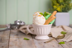 Vanilla and mint ice cream in cup Royalty Free Stock Photo