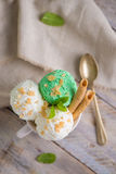 Vanilla and mint ice cream in cup Stock Photography