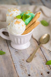 Vanilla and mint ice cream in cup Royalty Free Stock Photos