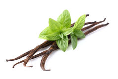 Vanilla with mint Royalty Free Stock Photo