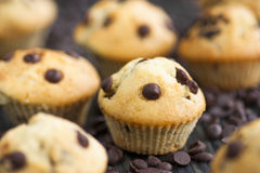 Vanilla muffins stock photo