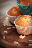 Vanilla muffins Stock Photography