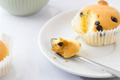 Vanilla muffins with chocolate chips. royalty free stock images