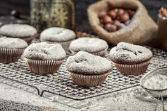 Vanilla muffins decorated with icing sugar Royalty Free Stock Photo