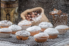 Vanilla muffins decorated with powder sugar Stock Images