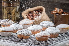 Vanilla muffins decorated with powder sugar Royalty Free Stock Photo