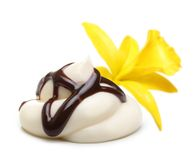 Vanilla orchid flower and cream with chocolate Royalty Free Stock Images