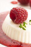 Vanilla panna cotta with berry sauce Royalty Free Stock Photo