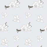 Vanilla pattern Stock Image