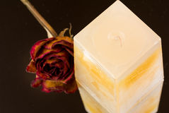 Vanilla, peach scented candle with dried rose bud Stock Image