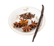 Vanilla pod with anise stars and cloves. Stock Images