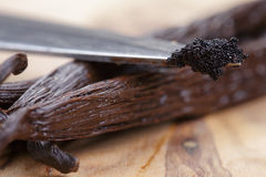 Vanilla pod on olive board with beans on knife Royalty Free Stock Image