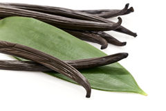 Vanilla pods. Fresh vanilla pods with a green leaf Royalty Free Stock Photography