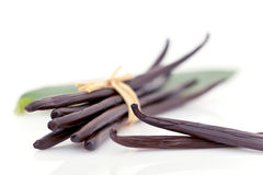 Vanilla pods Royalty Free Stock Images