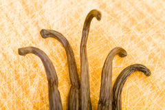 Vanilla pods. Laying on a wooding cutting board in the kitchen Royalty Free Stock Photos