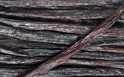 Vanilla Pods Stock Images