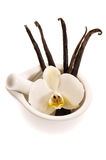 Vanilla pods and flower Royalty Free Stock Photo