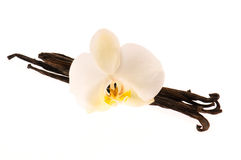 Vanilla pods and flower Stock Photo