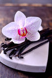Vanilla Pods and Flower over Wooden Background Royalty Free Stock Photo