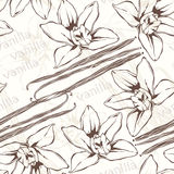 Vanilla pods and flowers. Hand-drawn seamless pattern. Stock Photo