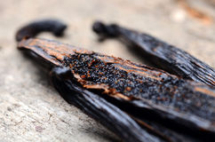Vanilla pods. High resolution image Royalty Free Stock Photos