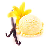 Vanilla pods with icecream. Vanilla pods and flower with a delicious scoop of rich creamy icecream served for a refreshing summer dessert Royalty Free Stock Photography