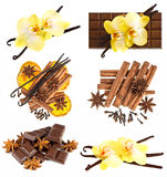 Vanilla pods with orchid flower, chocolate, cinnamon sticks Stock Photography