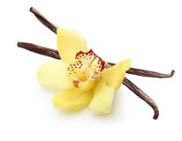 Vanilla pods and orchid flower Stock Photography
