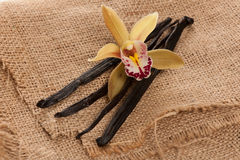 Vanilla pods and orchid flowers on textile Stock Image