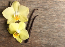 Vanilla pods and orchid flowers Royalty Free Stock Photography