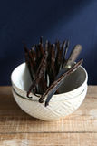 Vanilla pods. On a white bowl Stock Photography