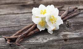 Free Vanilla Pods With Jasmine Stock Images - 52063554