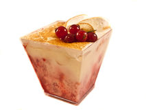 Vanilla pudding Royalty Free Stock Photo