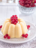 Vanilla pudding with red currants on a plate Stock Images