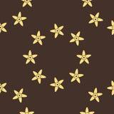 Vanilla. Seamless background flowers in vanilla. Vanilla vector. Vanilla abstract. Stock Image