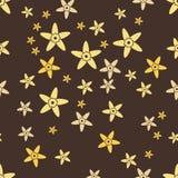Vanilla. Seamless background flowers in vanilla. Vanilla vector. Vanilla abstract. Stock Photo