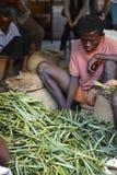Vanilla selection from Madagascar Stock Photo
