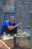 Vanilla selection from Madagascar Royalty Free Stock Image