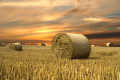 Vanilla sky. Field with hay and beauty sky stock images