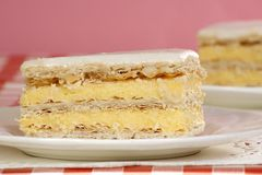 Vanilla slice Royalty Free Stock Image