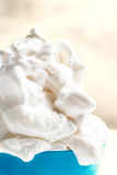 Vanilla Soft Ice Cream in blue bowl  over bright Background. Ice Royalty Free Stock Photography