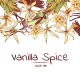 Vanilla spice poster for advertising company. Trendy food spice or parfum industry component vector illustration. Vanilla flower sticks, leaves and extract oil Royalty Free Stock Photo