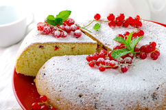 Vanilla sponge cake with fresh red currants Stock Photography