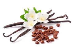 Vanilla sticks and coffee beans with flower isolated on white background Royalty Free Stock Photos