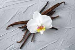 Vanilla sticks and flower on background. Vanilla sticks and flower on grey background Royalty Free Stock Photo