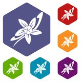 Vanilla sticks with a flower icons set hexagon Royalty Free Stock Images