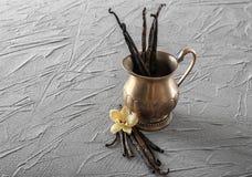 Vanilla sticks, flower and metal vase. On grey background Stock Photography