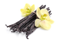 Vanilla sticks with a flower. Royalty Free Stock Photography